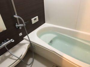 お風呂や銭湯、温泉、サウナが好き。でもすぐにのぼせます。